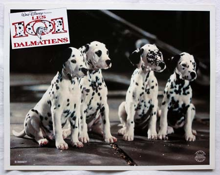 LES 101 DALMATIENS Photos du film x9 - 28x35 cm - 1996 - Stephen Herek, Glenn Close, Jeff Daniels